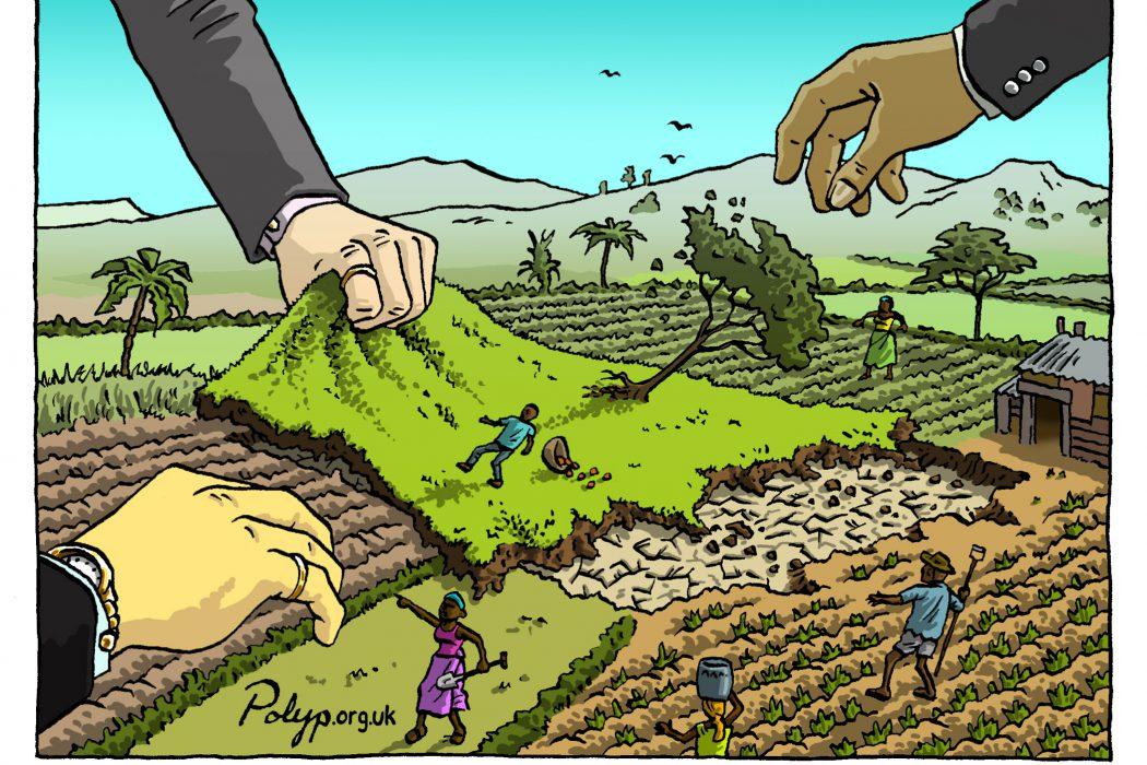 La stratégie foncière au Maroc : leçons des stratégies sectorielles nationales et des pratiques internationales